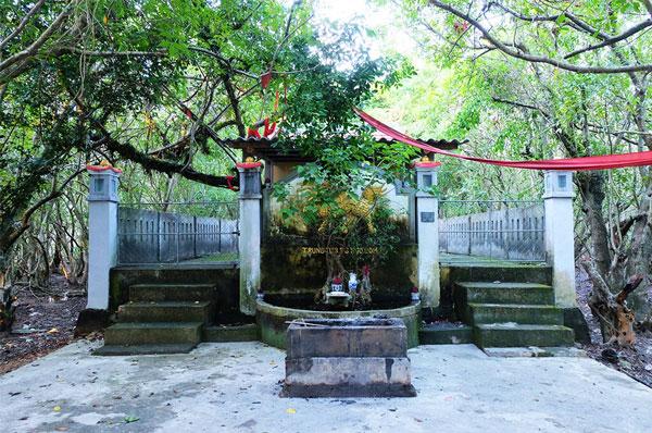 Ru-Cha-Hue-mangrove-forest-3