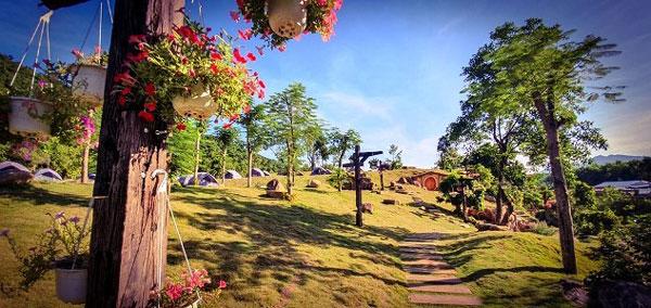 flower-in-bach-ma-village